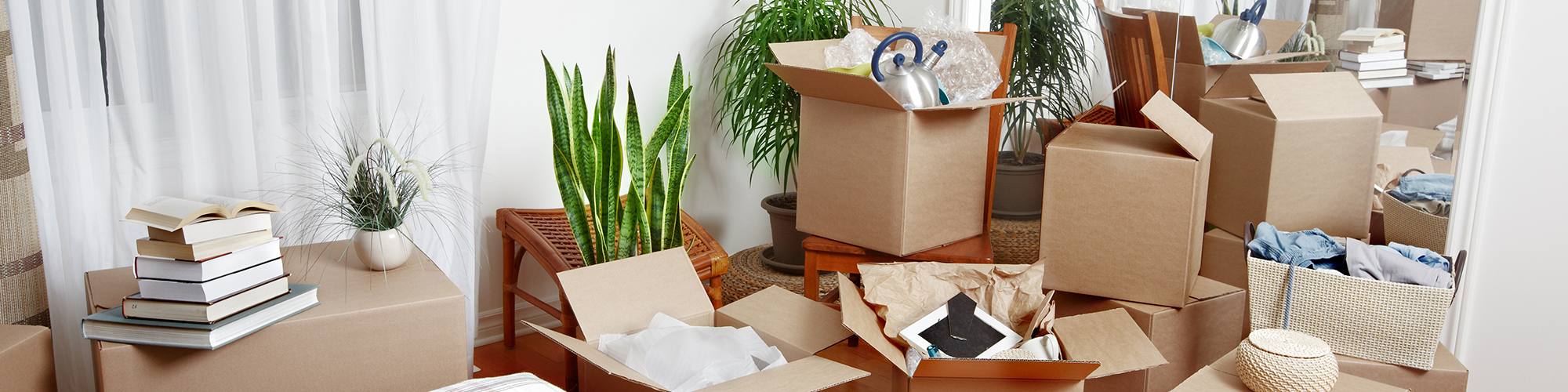 Packing Services in Charlotte, NC